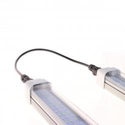Engrais Orchid Focus Bloom 300ml