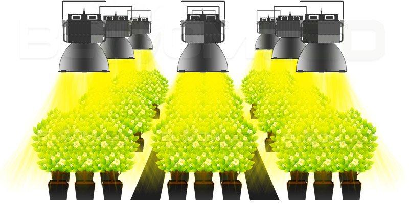 Lampe de culture led pour salle de culture - Lampe led horticole ...