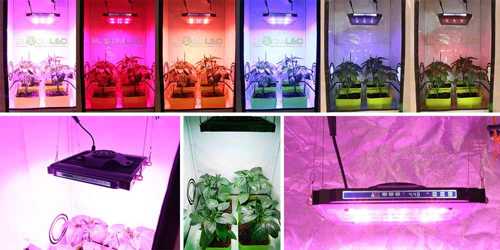 Lampe Led Horticole High Tech 200w Leds Osram Ecran Tactile