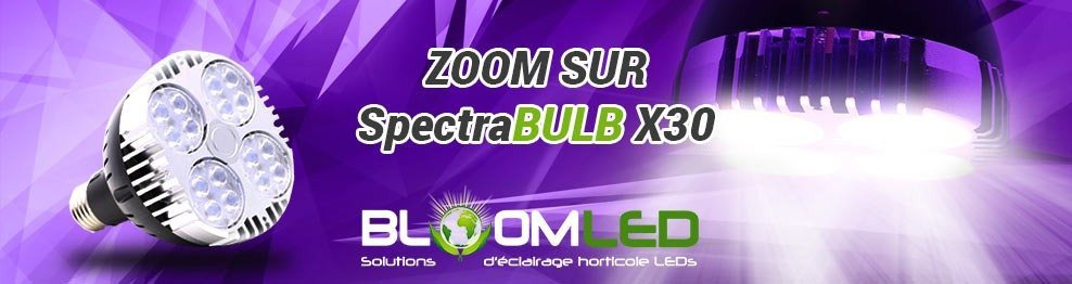 spectrabulb x30 bloomled zoom sur l 39 ampoule horticole led 30w. Black Bedroom Furniture Sets. Home Design Ideas