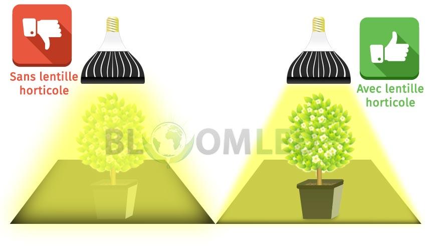 Utilisation ampoule horticole led SpectraBULB X20