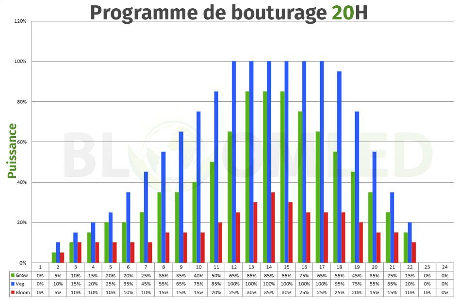 Programme-bouturage-bloomled