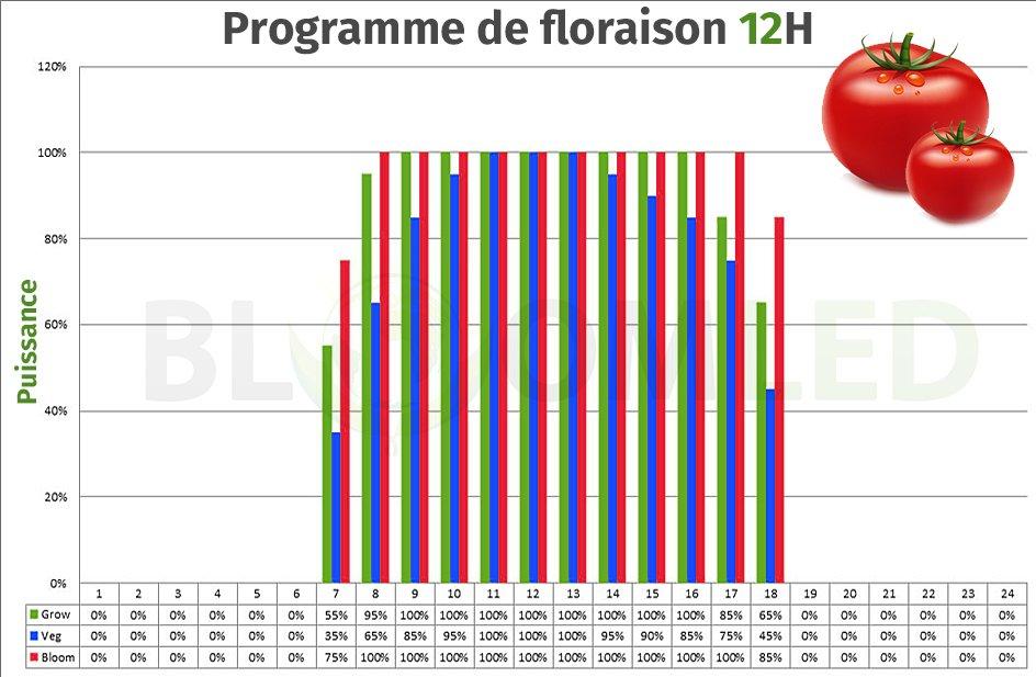 Programme de culture floraison X85 X135 X540