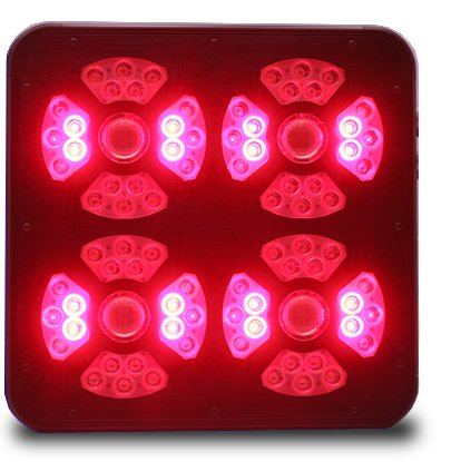Eclairage horticole LED SpectraMODULE X540