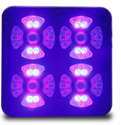 Eclairage horticole LED SpectraMODULE X540 LED UV et Bleu