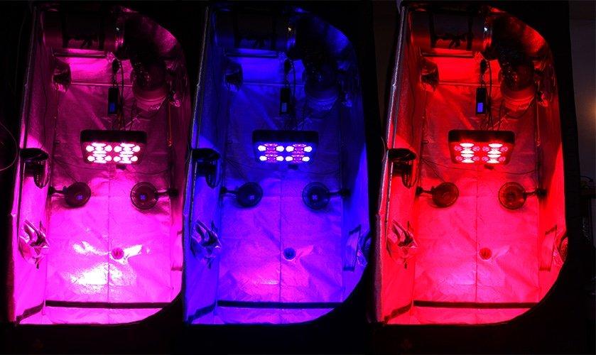 Eclairage horticole LED SpectraMODULE